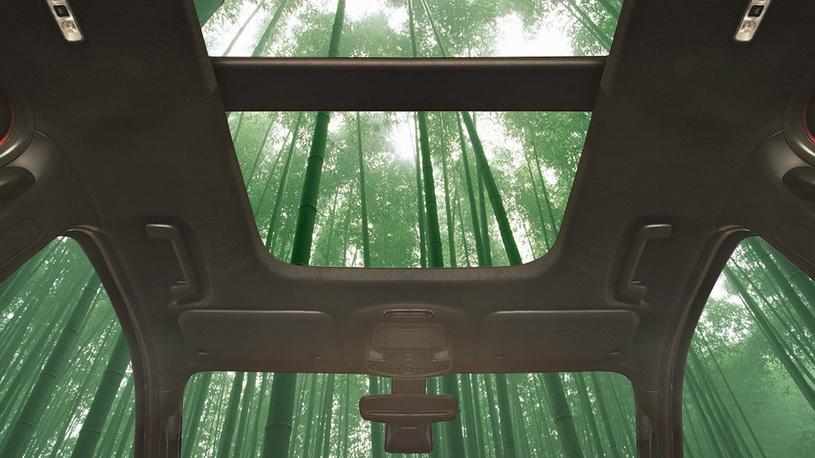 Ford будет использовать бамбук в производстве автомобилей