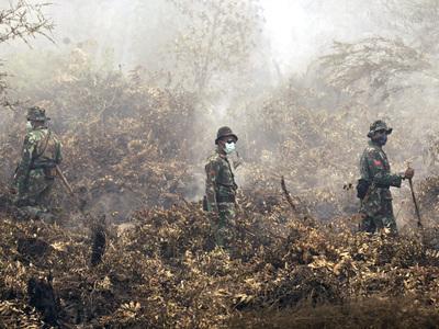 В Индонезии в лесных пожарах погибли не менее 10 человек