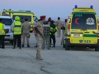 В морги Каира доставлены останки 163 пассажиров
