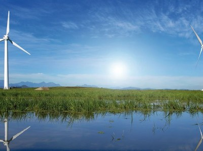 Крупный бизнес включился в борьбу за климат