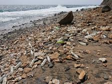 """Из-за сильной загрязнённости Северное тихоокеанское течение получило неформальное прозвище """"северный тихоокеанский мусорный поток""""   ((фото Hoshana/Wikimedia Commons).)"""