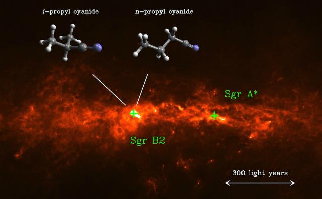 Органическая молекула изопропила цианида имеет разветвлённую углеродную цепь (слева), в отличие от прямой цепи изомера пропилового цианида (справа). Обе молекулы были обнаружены в облаке Стрелец В2 (иллюстрации MPIfR/A.Weiss, Universität zu Köln/M.Koerber, MPIfR/A. Belloche).