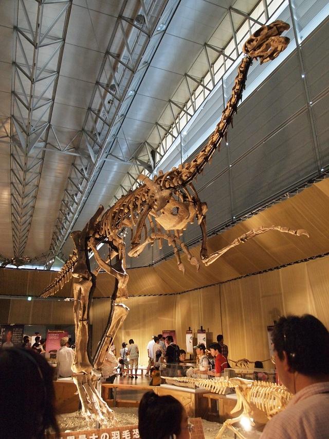 Гиганторапотр, один из овирапторозавров, вырастал до 8 метров в длину и весил несколько тонн (фото Kondo Atsushi/Wikimedia Commons).
