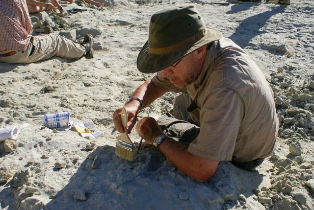 Палеонтолог Дэвид Краузе во время раскопок (фото David Krause).
