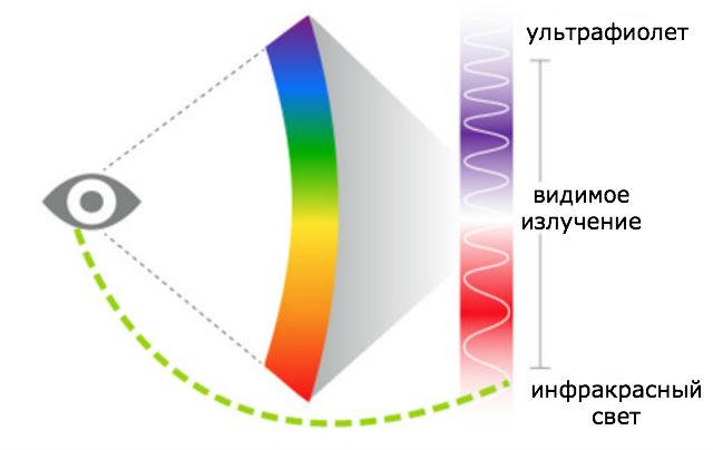 Незримый инфракрасный свет оказался доступен для восприятия человеческим глазом (иллюстрация Sara Dickherber).