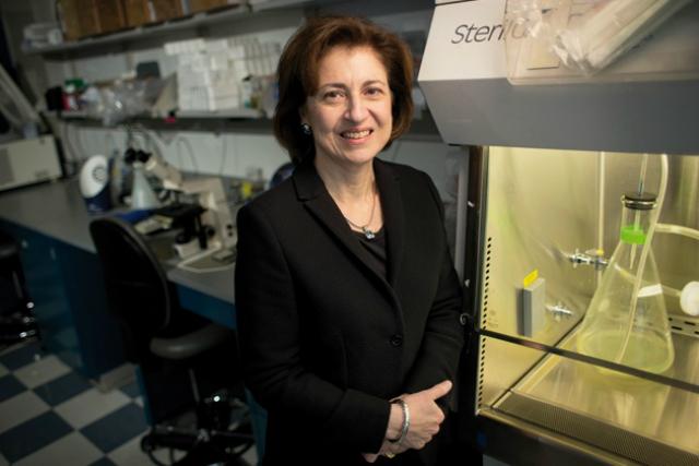 Сюзанн Топалян, предложившая использовать иммунотерапию против рака (фото Chris Maddaloni).