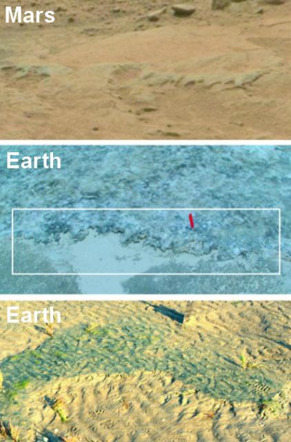Эрозионные остатки на Марсе, а также на острове Портсмут, США (в середине) и на острове Меллум, Германия (фото NASA/ Nora Noffke).