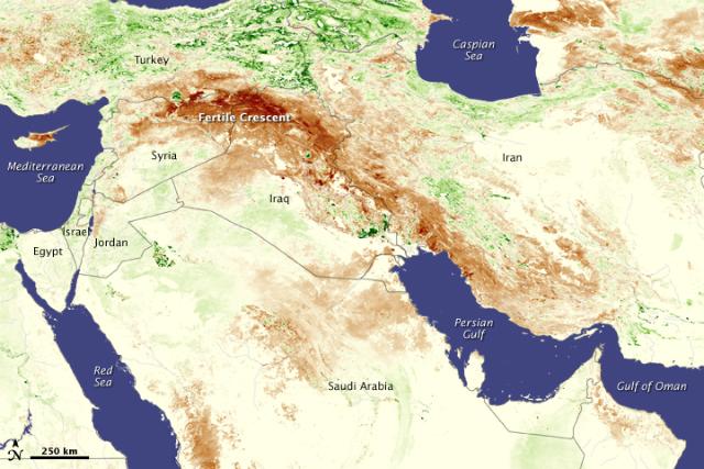 В 2006-2010 году беспрецедентная засуха (коричневые участки) поразила большую часть Турции, Сирии и Ирака. Сирия оказалась особенно уязвима к её последствиям (иллюстрация NASA).