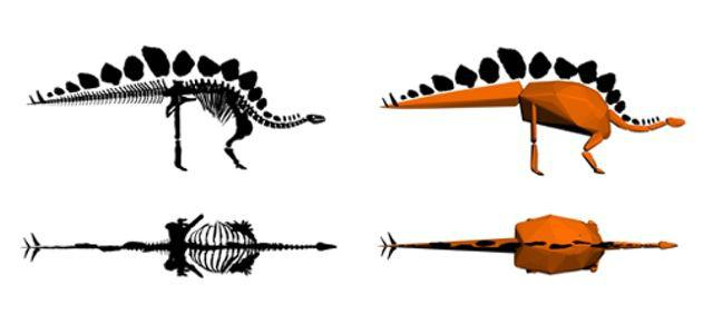Исследователи использовали 3D-модель скелета, чтобы установить массу динозавра на момент смерти (иллюстрация NHM London).