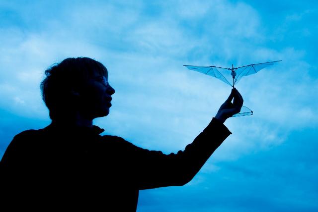 Аспирантка Стэнфордского университета Аманда Стоуэрс демонстрирует новую конструкцию крыла для летающих роботов (фото Stanford University).