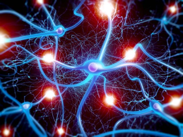 Лазер, созданный командой французских учёных, похож в некоторой степени на нейроны мозга (фото CNRS Laboratory for Photonics and Nanostructures).