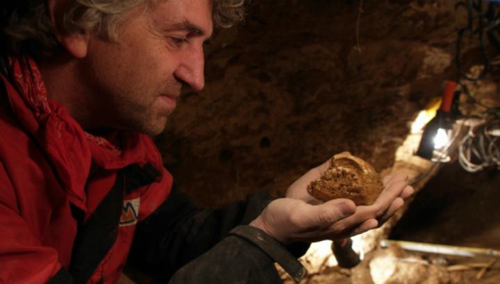 Профессор Хуан-Луис Арсуага извлекает окаменелость из породы (фото Javier Trueba/Madrid Scientific Films).