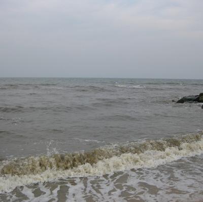 У берегов Камчатки спасают рыболовецкий сейнер