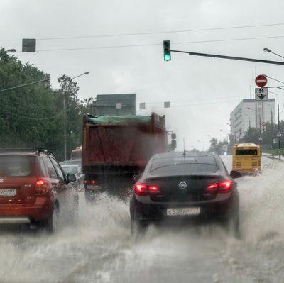 В Москве с начала мая выпало более 150% месячной нормы осадков