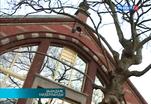 Музей Петра Первого в Голландии открыл свои двери после реставрации