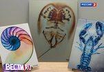 Рентген как искусство: американские врачи развлекаются