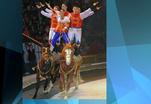 Российские артисты стали победителями Международного фестиваля циркового искусства