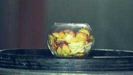 Бадюк осыпал студию лепестками роз
