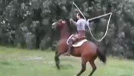 Лошадь прыгает через скакалку
